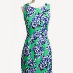 J.Crew Factory Dress in Green and Navy